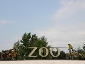 ZOO SAFARI w Dvůr Králové 2010-2